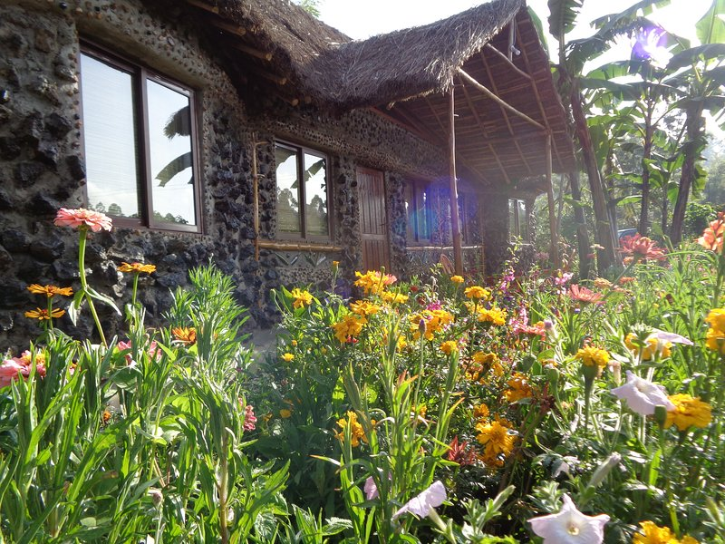 Mt Kenya River side Retreat The Perfect venue for cosy and Relaxing holiday, holiday rental in Eastern Province