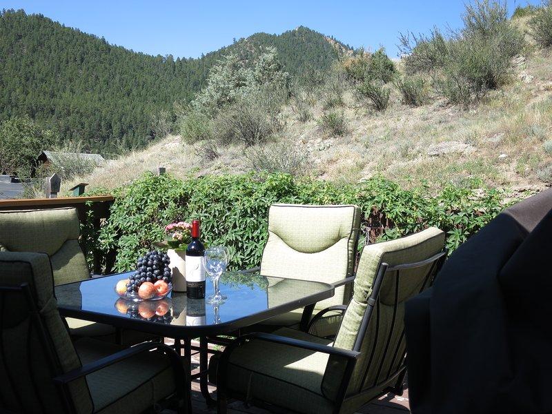 MINER'S CABIN NEAR SKI RESORTS, HOT SPRINGS, WHITEWATER RAFTING, holiday rental in Idaho Springs