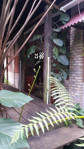 Casa de los micos, vacation rental in Leticia