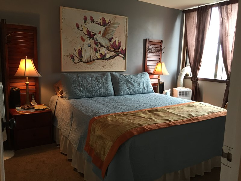 Large bright bedroom with Calking bed