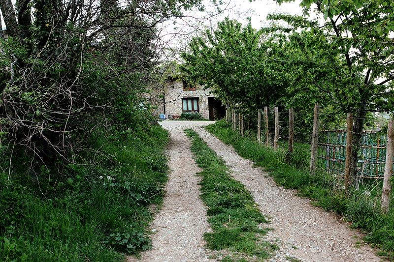 Casa Fumenal, holiday rental in Campo