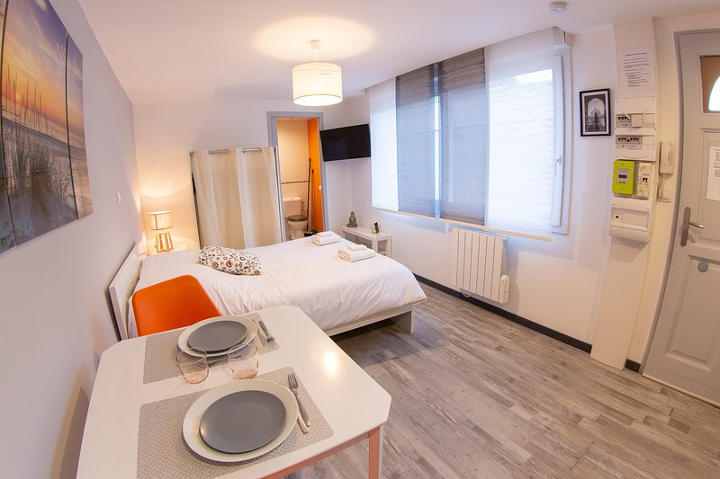 Trankil'Appart Centre, TR14, 1 lit double, 25M2, Terrasse Privative, holiday rental in Hauteville