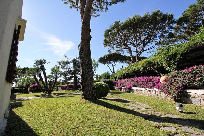 SILENCIOUS SMALL VILLA WITH SPACIOUS GARDEN + POOL, vacation rental in Forio