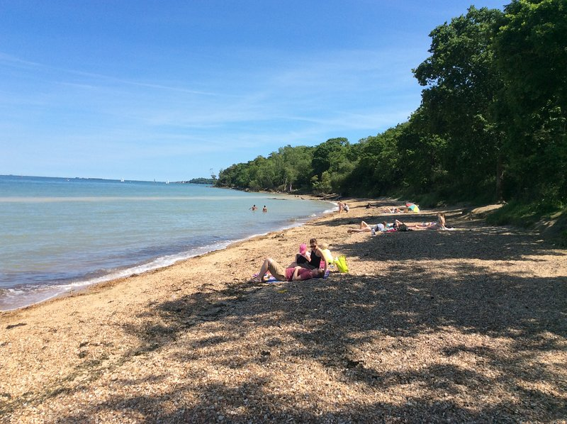 Local woodland beach