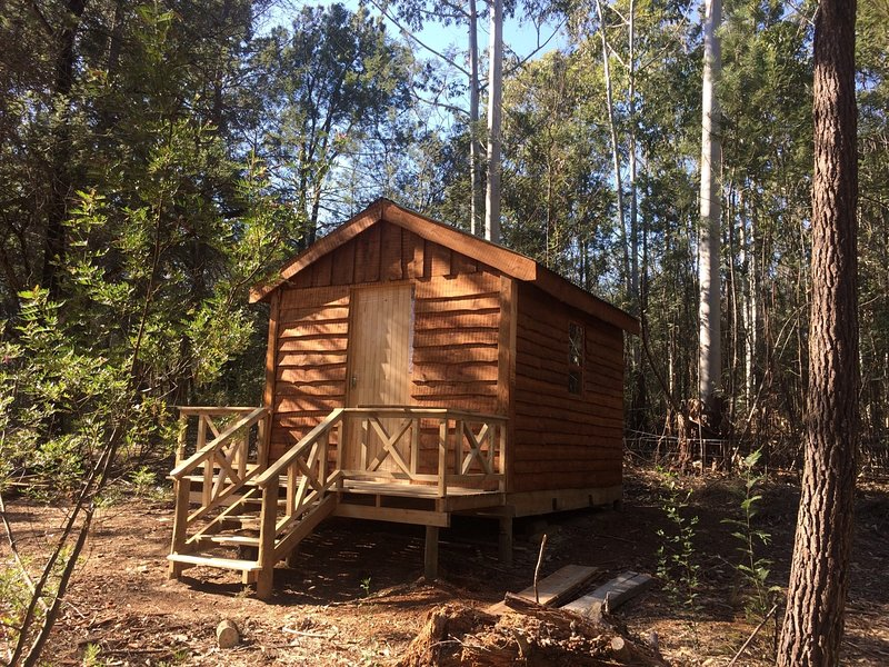 Cabin 5 (New), Pachamama Forest Retreat., vacation rental in Rheenendal