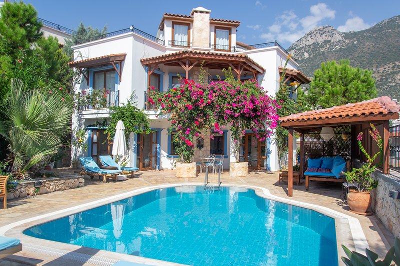 Villa and pool terrace