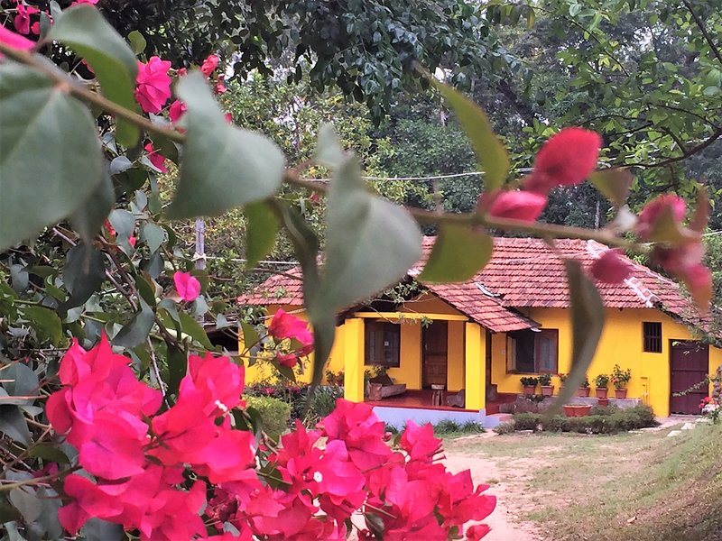 Guddadamane Homestay - Cottage, holiday rental in Hanbal