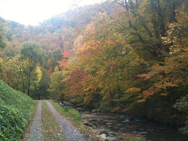 Wildacre driveway along the creek