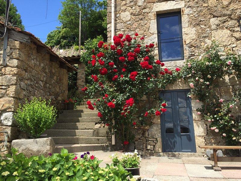 Studio de charme en pleine nature avec une belle vue!, holiday rental in Prades