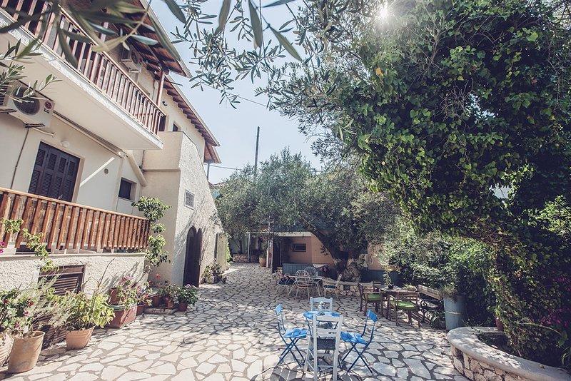 Gran patio compartido a la sombra de olivos.
