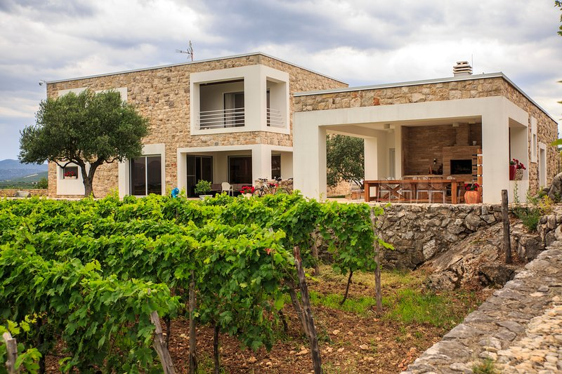 Villa Stanić Estate, holiday rental in Otric-Seoci