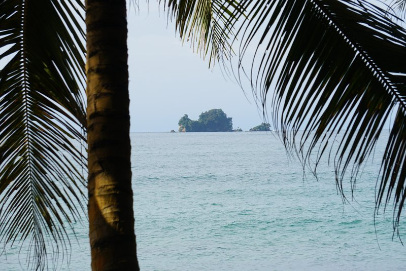 Viewing Bird Island from the beach in front of the house