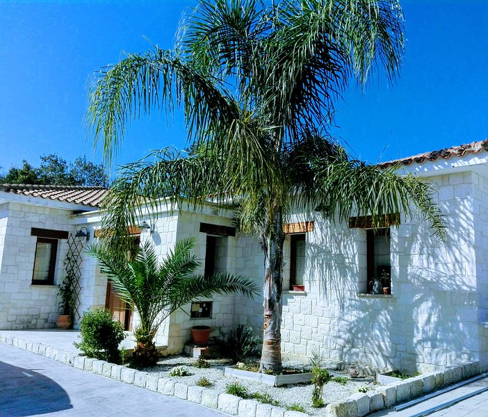Lasa Valley Villa. Spacious villa set in its own grounds with private pool, vacation rental in Stroumbi