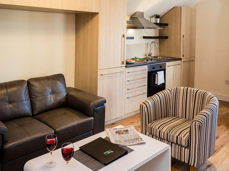 VERY BEST IN STYLE & COMFORT-BALLSBRIDGE 1BR APT, vacation rental in Howth
