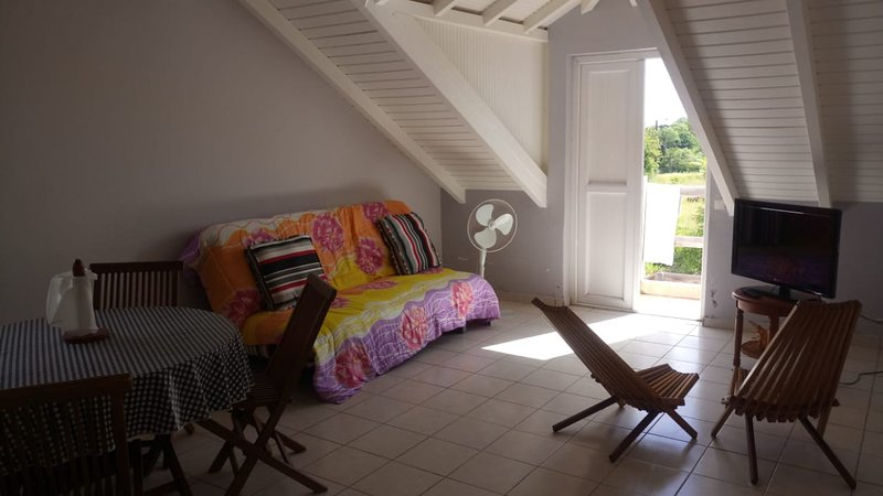 Amazing apartment with terrace, alquiler de vacaciones en Capesterre