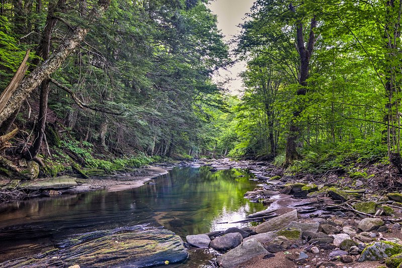 Enjoy this vacation rental cabin's private setting next to a babbling brook.