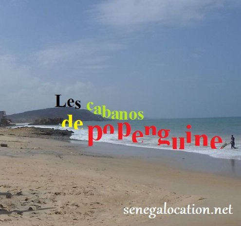2 maisons face à la mer, piscine, pension, clim, transfert, excursions., holiday rental in Thies