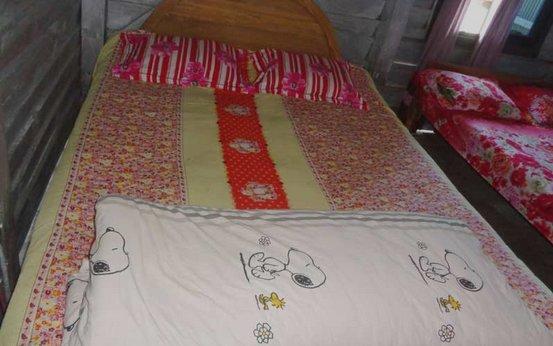Sajek Himalaya Resort (Executive Bedroom 4), vacation rental in Sajek