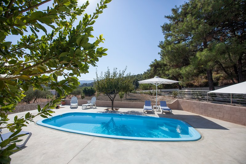 The Olive Grove, holiday rental in Paradeisi