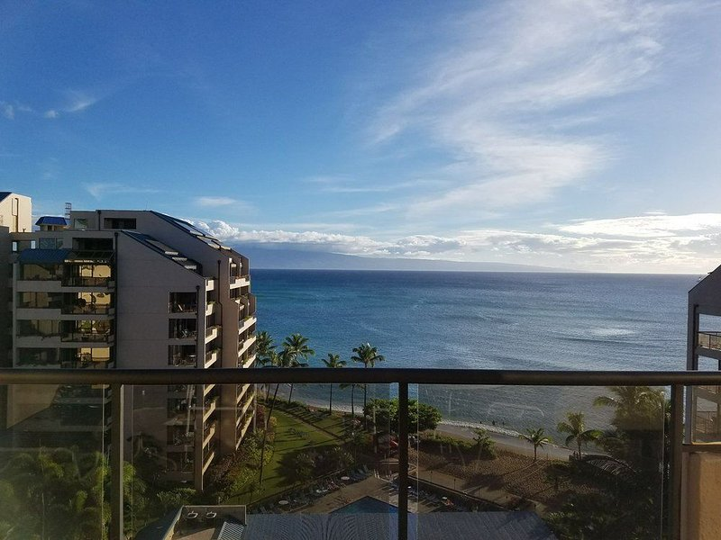 2 Christmas Holiday weeks-2 bedroom condo-dryer/washer/on ocean and pool, holiday rental in Kapalua