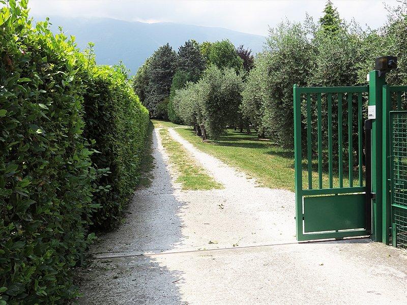 Villa Degli Ulivi, con grande Giardino e Piscina, holiday rental in Castiglione a Casauria