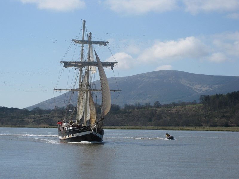 The tall ship on its way to Glencaple