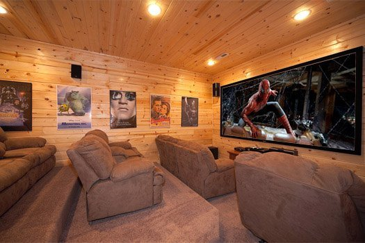 Theater Room at Log Wild!