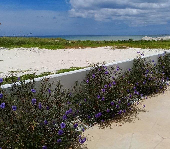 Patio lateral al mar es de 300 pies cuadrados
