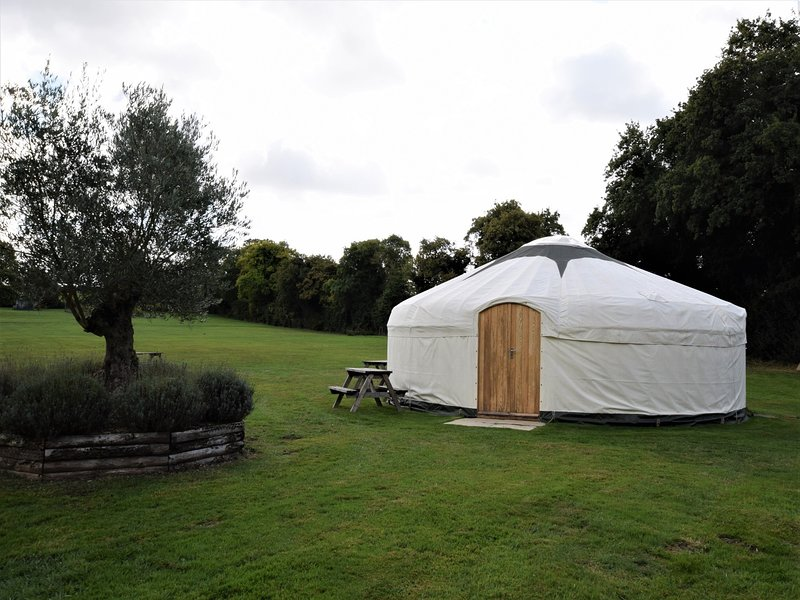 Yurt available for  extra accommodation or entertaining