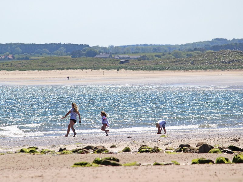 There are fantastic local beaches to explore