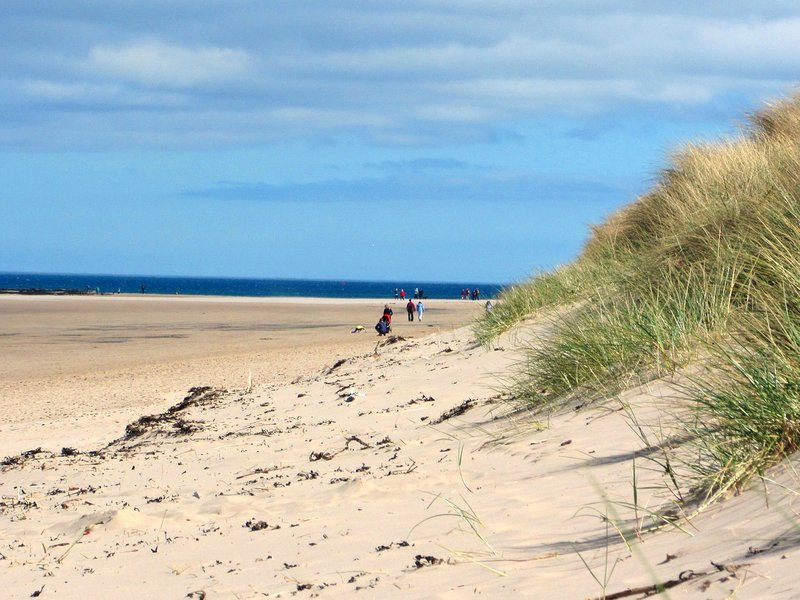 Drive to Northumberland's Heritage Coast for lovely  beach walks