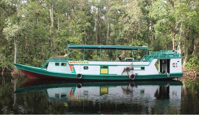 Orangutan Arut 2 houseboat, holiday rental in Central Kalimantan