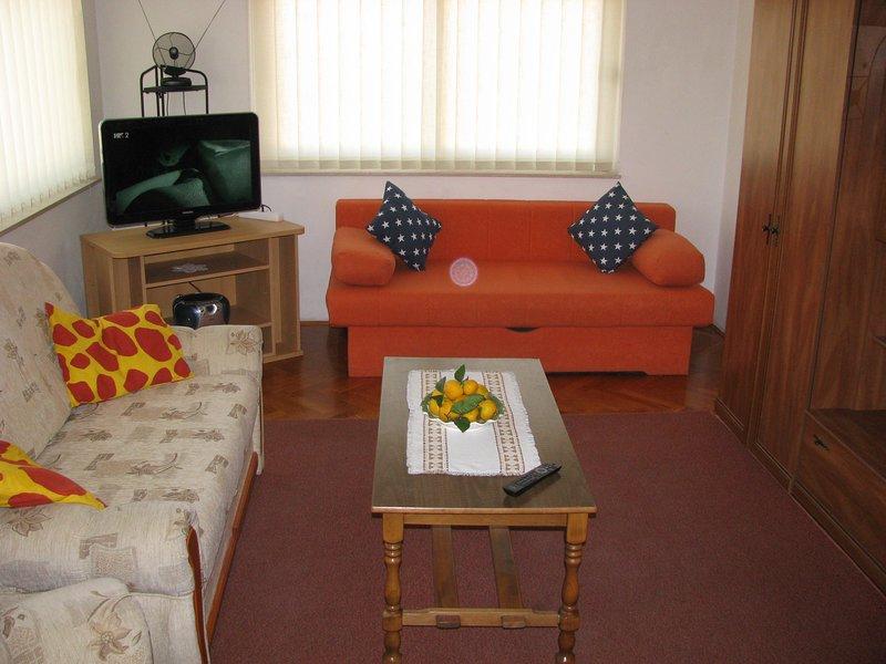 sofá cama, en la sala de estar, cuando las extensiones pueden acomodar a 6 personas o incluso más