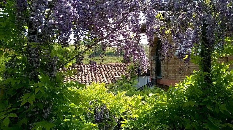 Casa Sonny: cottage in magico giardino a 3km dal centro storico di Asti, vakantiewoning in Scurzolengo
