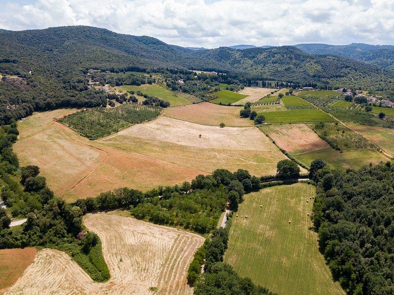 Countryside apt near Siena. Holiday in Tuscany!, holiday rental in Capannino della Suvera