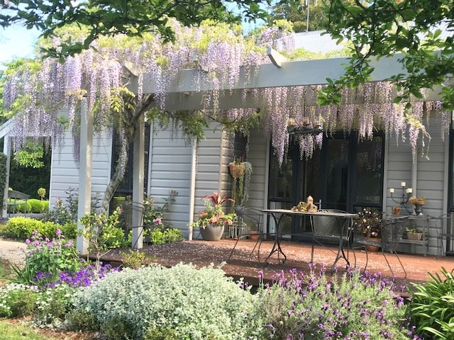 Relax on the deck under the wisteria.