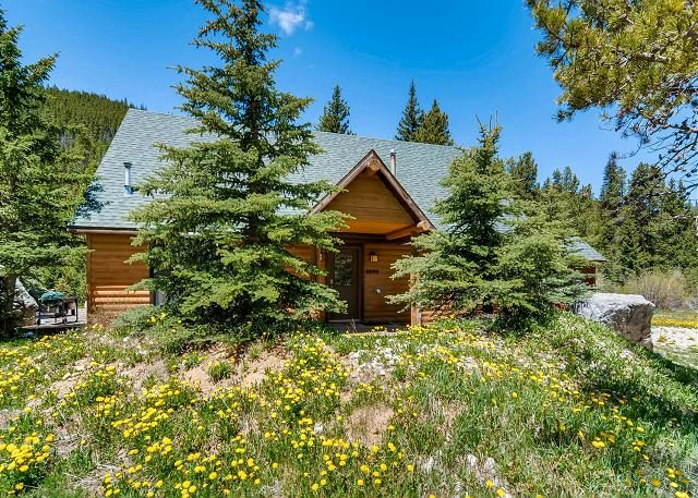 Blue River Cabin with Deck - 3 Miles to Breckenridge, holiday rental in Breckenridge