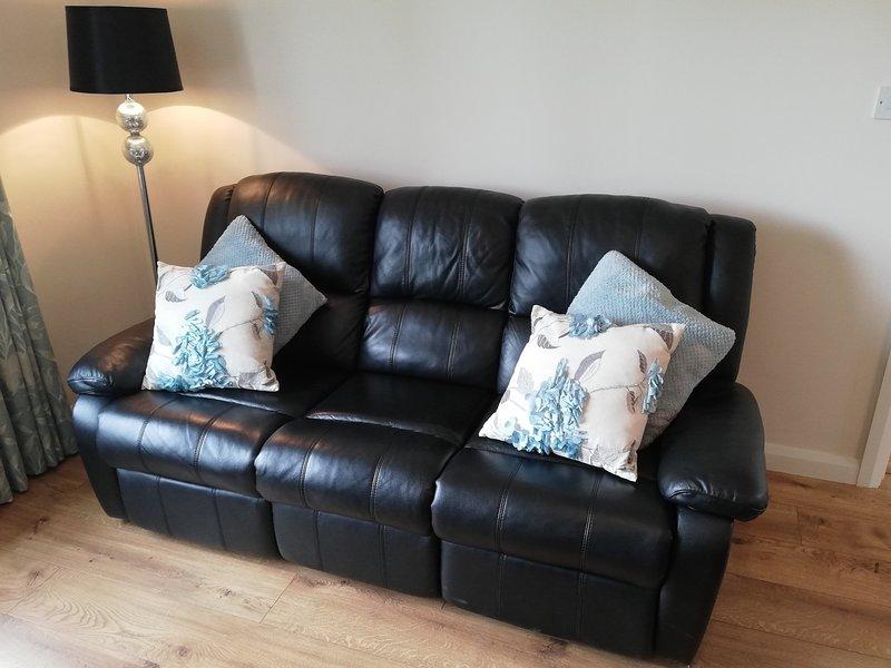 The Leather sofa