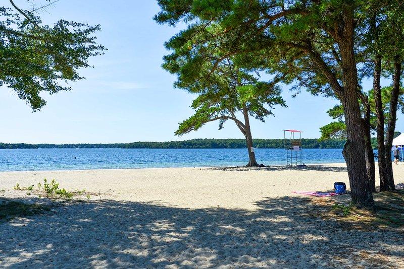 Trascorri una giornata indimenticabile sulle rive sabbiose del parco!