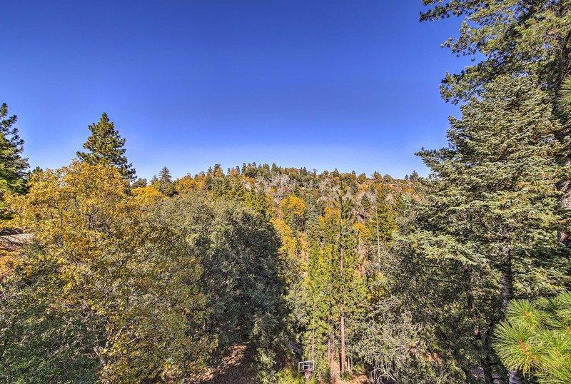 Run away to the San Bernardino National Forest for your next California retreat!