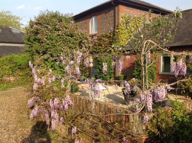 Spring in The Dovecote courtyard.