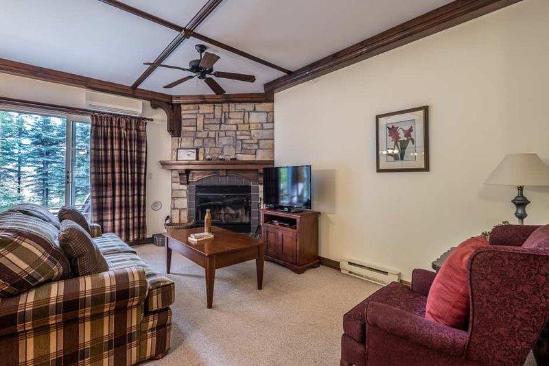 Área de estar com lareira de pedra e TV de tela plana