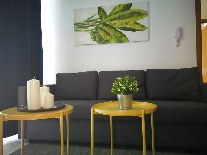 Junior Deluxe 40mt2 Apartment, vacation rental in Santo Domingo