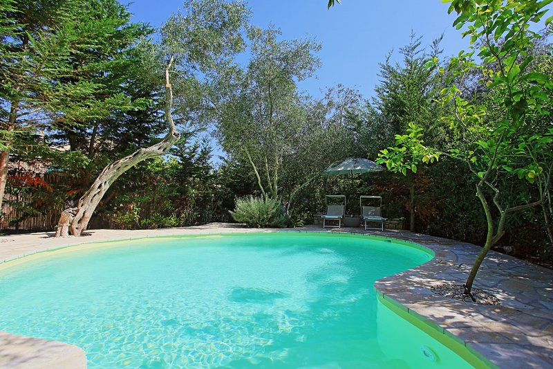 Prasini Luxury Cottage: Pool, A/C, Wi Fi, lovely gardens, holiday rental in Antipaxos