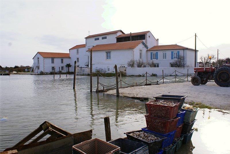 IR, 4p, Appartement d'hôtes de charme, proche Royan, alquiler vacacional en La Gripperie-Saint-Symphorien