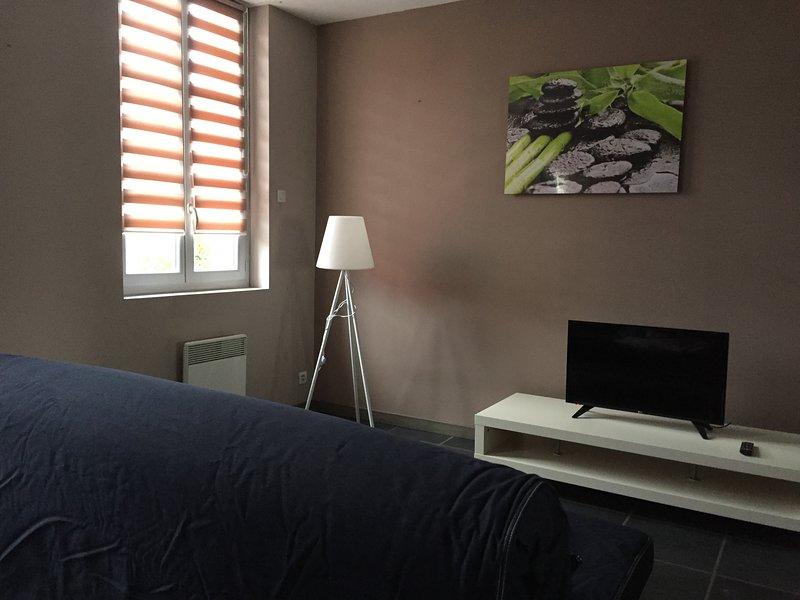 Appartement avec terrasse, holiday rental in Chelle Debat