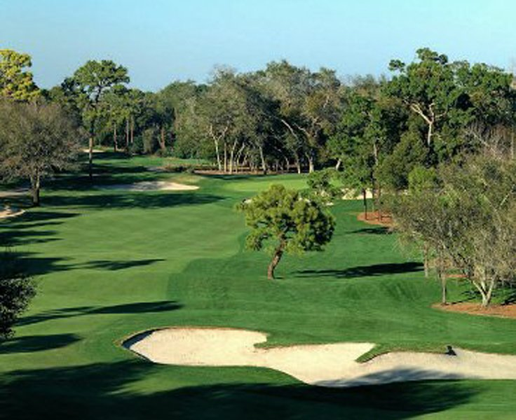 Enjoy Unlimited Free Golf, Near Top-rated Beaches, Dec. Special!, alquiler vacacional en Palm Harbor