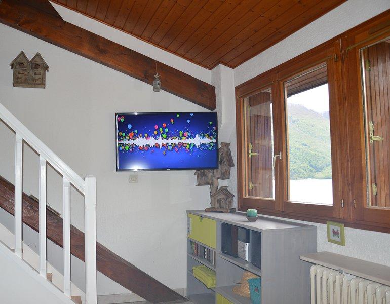 Flat TV (40') / Hifi system