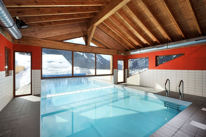 Apartment Cozy + Charming, free shuttle to the Portes du Soleil! Chalet in Chatel