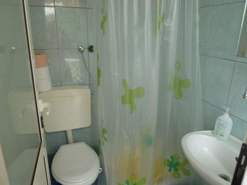 SA1 Istok(2): bathroom with toilet